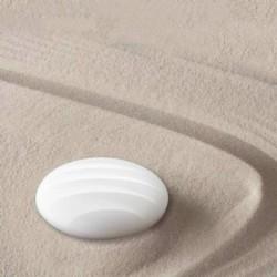 Xiaomi Lunar - Ítem5